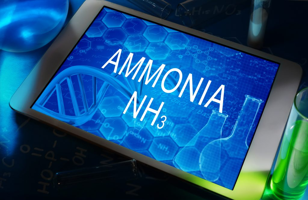 Is ammonia the next zero emission fuel