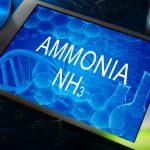 Is Ammonia The Next Zero Emission Fuel?
